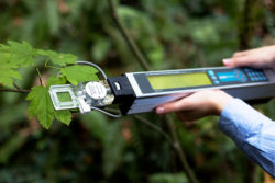 CI-340 Lightweight Handheld Photosynthesis System